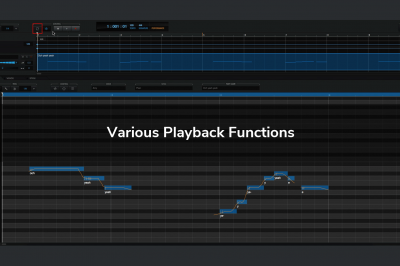 Various Playback Functions